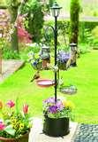 photos of Bird Feeder With Solar Light