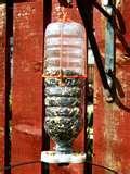 Bird Feeder Glue photos