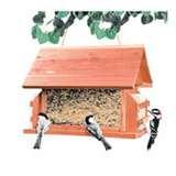 Outdoor Seasons Bird Feeder Lodge pictures