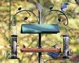 Bird Feeders Darien Ct photos