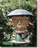 Bird Feeder Anti Squirrel images