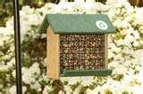 Bird Feeders Hd