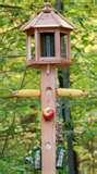 High Quality Bird Feeders pictures