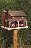 Bird Feeder Ecology pictures