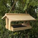 Bird Feeders Video