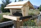 photos of Bird Feeder Types Hopper