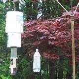 Bird Feeder Anti Squirrel photos