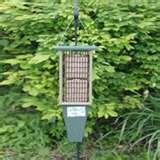 pictures of Bird Feeders Hd