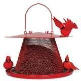 Bird Feeders Hd pictures
