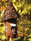 photos of Bird Feeders 2l Bottle