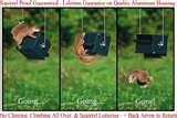 photos of Squirrel Proof Bird Feeders Roller