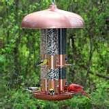 Perky Pet Bird Feeders Triple Tube photos