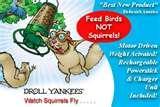 Bird Feeder Yankee Flipper Video photos