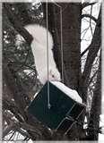images of Squirrel Proof Bird Feeders Roller