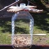 photos of Bird Feeder Sydney