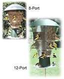 Bird Feeders Boxes photos