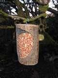 images of Bird Feeders Boxes