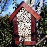images of Bird Feeders Nesting Boxes