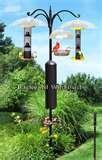 Bird Feeder Height pictures