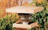 images of Recycled Bird Feeders Projects