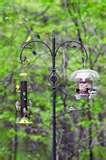 Backyard Bird Feeders Setups images