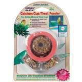 images of Fruit Kabob Bird Feeder