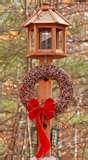 images of Bird Feeders Gelatin