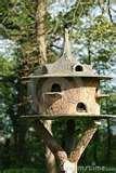 Bird Feeder American