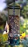 Bird Feeders Tipper images