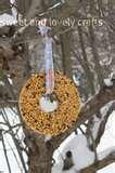 Bird Feeders Gelatin pictures