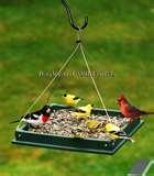 Bird Feeders From Recycled Items photos