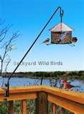 Bird Feeder My Deck images
