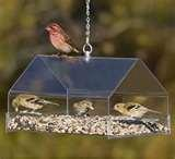 photos of Bird Feeders By Duncraft