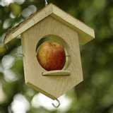 pictures of Bird Feeder Apples
