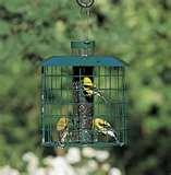 images of Bird Feeders By Duncraft