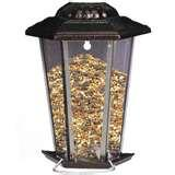 Bird Feeder Assembly images