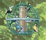 Bird Feeder Globe pictures