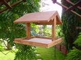 Bird Feeders Wooden pictures