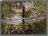 Bird Feeders Dragonflies images