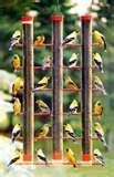 images of Bird Feeder Recommendations