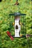 Wild Bills Bird Feeder Tester images