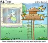images of Bird Feeders Jokes