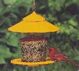 Bird Feeder Recommendations