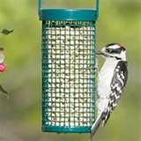 Nugget Bird Feeder images