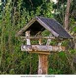 Bird Feeders Information images