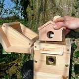 Bird Feeder Nest images