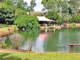 Bird Feeders Brisbane images