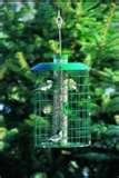 images of Bird Feeders Squirrel Protectors