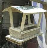 Bird Feeder Ky photos