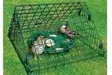 Bird Feeders Squirrel Protectors images